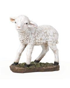 """39"""" Scale Color Lamb 12""""H"""
