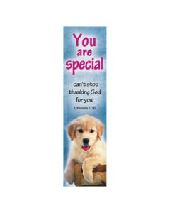 BMPK - You are Special