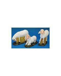 Sheep (Set of Three)